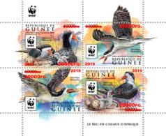 Z08 GU190123a1 Guinea Guinee 2019 WWF Skimmer MNH ** Postfrisch - Guinea (1958-...)