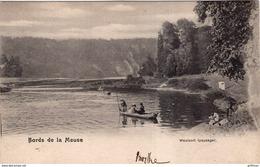 BORDS DE LA MEUSE WAULSORT PAYSAGE 1902 PRECURSEUR TBE - Belgique