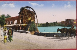 Syrie Syria Hama Water Mill Watermolen Donkey Ezel Ane Natives (In Very Good Condition) - Syrie