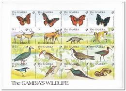Gambia 1991, Postfris MNH, Animals - Gambia (1965-...)