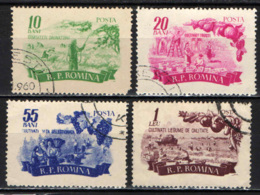 ROMANIA - 1955 - Quality Products Of Romanian Agriculture - USATI - Gebraucht