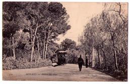 4585 - Monaco - Avenue Des Pins - N°550 - - Monte-Carlo