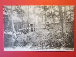 CPA CHARENTE MARITIME SAINT GEORGES DE DIDONNE LES PALOMBIERES DE SUZAC 1913 - Saint-Georges-de-Didonne