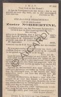 Doodsprentje Zuster/Soeur Norbertine °1867 Moerbeke †1921 Sint Niklaas   (B195) - Obituary Notices