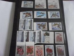 Stamp Sets 1980 1981 Cabo Verde Cape Verde - Cape Verde