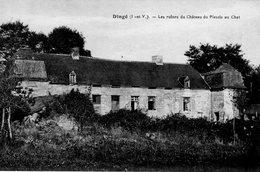 Dingé (35) - Les Ruines Du Château Du Plessis Au Chat. - Other Municipalities