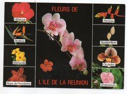 Réunion---1997 -- Fleurs De La Réunion ( Orchidées.....) ...........à Saisir - La Réunion