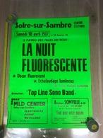 Affiche 1987, Solre Sur Sambre, La Nuit Fluorescente, Centre Culturel, Patro Des Filles - Affiches