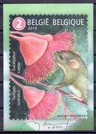 Belgie - 2019 - OBP - 5 Max. Kaarten - ** M.Meersman ** Uitgifte Bpost - Maximum Cards
