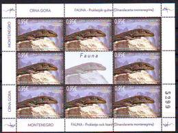 Montenegro 2019 Fauna Lizard Mini Sheet MNH - Montenegro