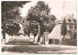 Camp De Stetten - Allemagne - Service Du Materiel - Barracks