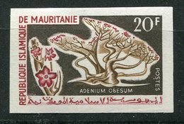 Mauritanie ** ND N° 186 - Arbre - Mauritania (1960-...)