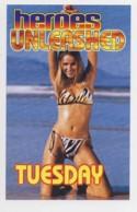 AI37 Advertising Card, Heroes Unleashed, MIlton Keynes Leisure Plaza - Advertising