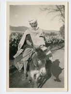 Homme Man âne Donkey Fellah Kabyle Afrique Du Nord Algérie ? - Africa