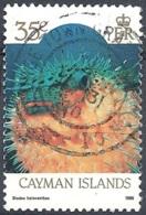 Cayman Isl., 1986 Diodon Holacanthus, 35c  # S.G. 639 - Michel 577I - Scott 567  USED - Cayman Islands