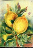 """Les Fruits De France """"Les Citrons"""" - Editions Barré Dayez - Année 1942 - Altri"""