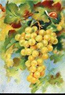 """Les Fruits De France """"Les Raisins Blancs"""" - Editions Barré Dayez - Année 1942 - Altri"""
