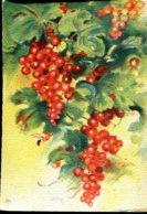 """Les Fruits De France """"Les Groseilles"""" - Editions Barré Dayez - Année 1942 - Altri"""