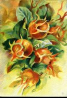 """Les Fruits De France """"Les Néfles"""" - Editions Barré Dayez - Année 1942 - Altri"""