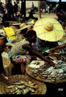 Afrique En Couleurs : Marchande De Poissons - Cartes Postales