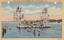 AR27 Diving Tower At Bertrand Island Park, Lake Hopatcong, N.J. - United States