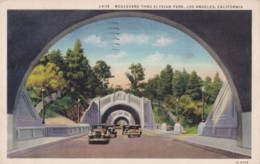 AR27 Boulevard Thru Elysian Park, Los Angeles, California - Linen Postcard - Los Angeles