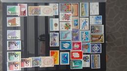 Album NATIONS UNIES Blocs, Bandes, Timbres ** Et Quelques Oblitérés. A Saisir !!! - Stamps