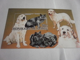 Miniature Sheet Imperf Cats And Dogs - Guinea (1958-...)