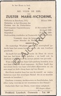 Doodsprentje Zuster/Soeur Marie-Victorine °1886 Berchem †1953 Oosterzele (B212) - Obituary Notices