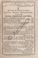 Doodsprentje Zuster/Soeur Maria Felicitas Lievens °1855 Liedekerke †1884 Opwijk (B211) - Obituary Notices