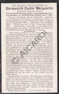 Doodsprentje Zuster/Soeur Marguerite / Eugenie Carlier °1857 Idegem †1929 Geraardsbergen (B203) - Obituary Notices