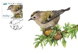 Portugal & Maxi Card, Europa CEPT, National Birds, Ferfolha, Regulus Regulus Azoricus,  Açores, Ponta Delgada 2019 (8418 - Perroquets & Tropicaux