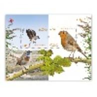 Portugal ** & Europa CEPT, National Birds 2019 (8411) - Perroquets & Tropicaux