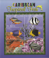 2001 St. Kitts Caribbean Tropical Fish Sheet MNH - St.Kitts And Nevis ( 1983-...)
