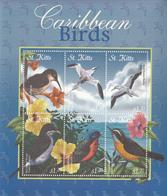 2001 St. Kitts Caribbean Birds Oiseaux Sheet MNH - St.Kitts En Nevis ( 1983-...)