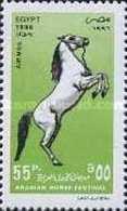 EGIPTO 1996 - CABALLOS - HORSES - CHEVAUX - YVERT Nº PA 245** - Egypt