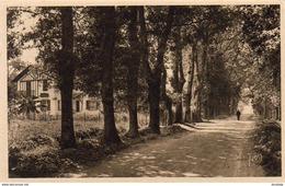 D64  CAMBO-LES-BAINS  Route De Saint- Jean- Pied- De- Port  ..... - Cambo-les-Bains