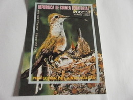Miniature Sheet Imperf Birds Nature Protection - Equatorial Guinea