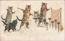 Cinq Chats Jouent Aux Quilles (Recto-Verso) - Illustrateurs & Photographes