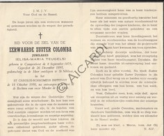 Doodsprentje Zuster/Soeur Colomba / Elisa Maria Teugels  °1875 Kampenhout †1950 Sint Niklaas (B187) - Obituary Notices