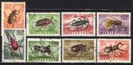 UNGHERIA - 1954 - SERIE INSETTI - INSECTS - USATI - Posta Aerea