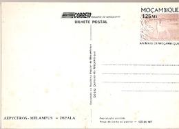 Mozambique ** & Postal Stationery, Animals From Mozambique, Impala, Aepyceros Melampus  (6801) - Mozambico
