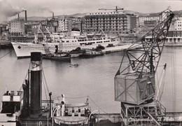 CIVITAVECCHIA-ROMA-IL PORTO-CARTOLINA VERA FOTOGRAFIA-VIAGGIATA IL 30-7-1954 - Civitavecchia