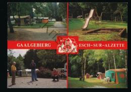 Esch Sur Sure - Gaalgebierg [AA43-5.017 - Cartes Postales