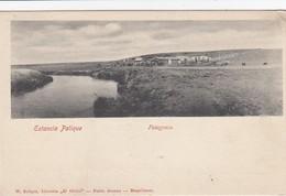 Patagonia - Estancia Palique - Chile