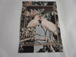 Miniature Sheet Imperf Nature Protection Birds - Equatorial Guinea