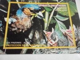 Miniature Sheet Perf Nature Protection Birds - Equatorial Guinea