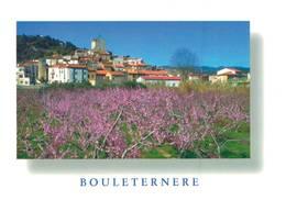 Bouleternere Vue Du Village Des Pecheurs En Fleurs  CPM Ou CPSM - Francia