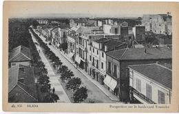 Blida. Perspective Sur Le Boulevard Trumelet Et Le Magasin De Droguerie De La Veuve Cote. . - Blida