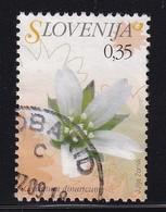 Slovenija 2007, Minr 617, Vfu - Slowenien